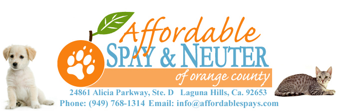 Affordable vet, Laguna Hills