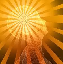 brain/consciousness